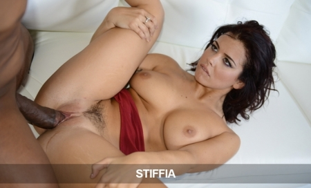 Stiffia Network: Just 4.00 - Ends Today!