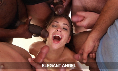 ElegantAngel: 7.95/Mo for Life - Ends Today!